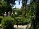 Ogród w Dobrzycy